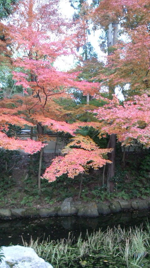 東福寺の名は 東大寺と興福寺の combinationである
