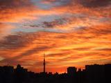 日の出とともに朝焼けの空が