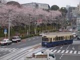 レトロっぽい電車が早稲田方面からやって来た