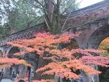 南禅寺琵琶湖疏水