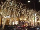 表参道 Dec.4th,2010
