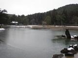 平泉「毛越寺」薄氷の大泉ヶ池、二代基衡公創建