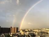 台風18号一過 翌朝の虹 (京都市西南方向)