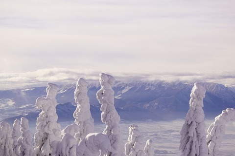 樹氷と雪景色