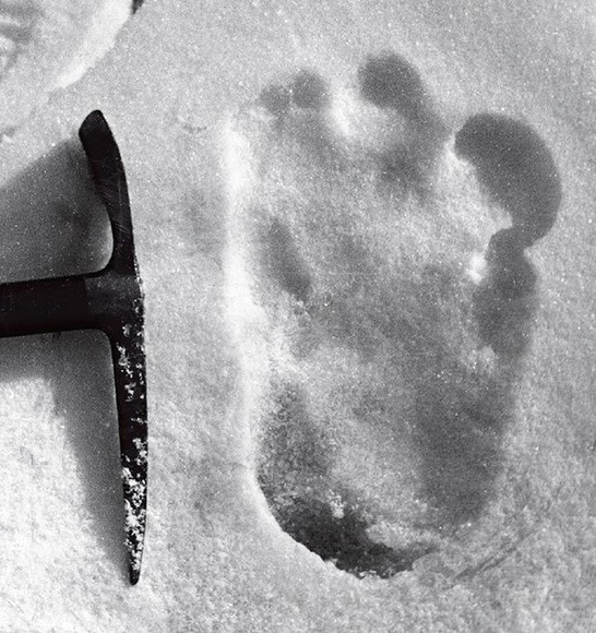 エベレスト登山隊が撮影した雪男の足跡と言われているもの。