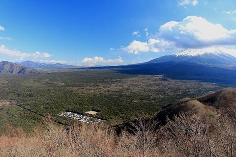 青木ヶ原と富士山