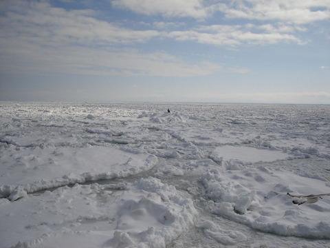 網走沖の流氷