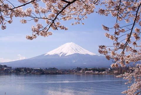 1280px-Lake_Kawaguchiko_Sakura_Mount_Fuji_3