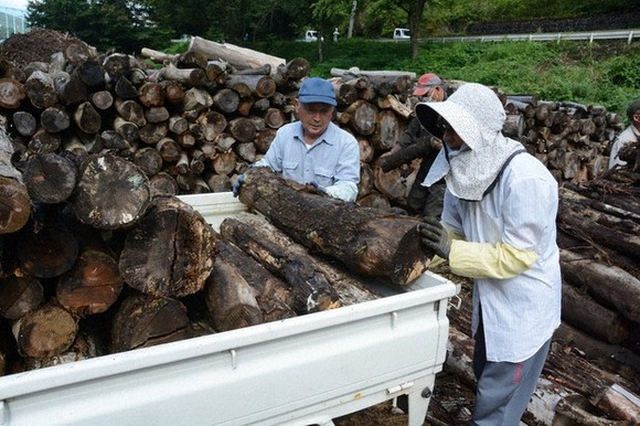 【岩手】ダム湖の流木、無償提供が人気!「ストーブのまきに」 処分費削減にも貢献
