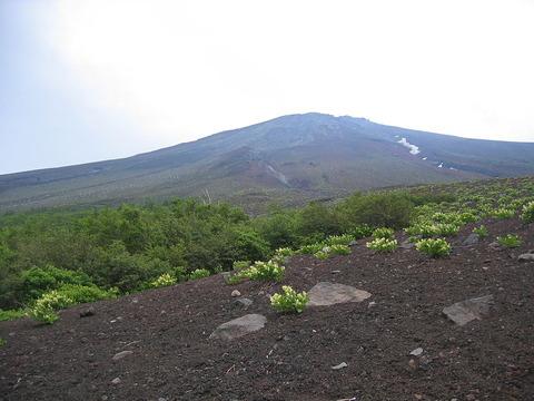 五合目以上の富士山
