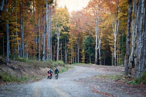 林道を走るバイク