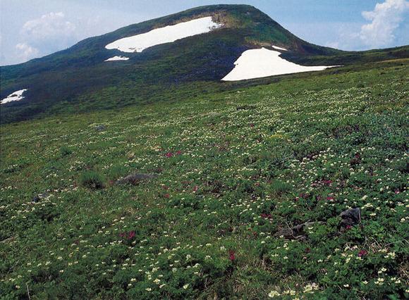 焼石岳 (1)