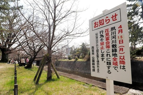 「桜が散ったら宴会禁止」を知らせる夙川沿いの看板