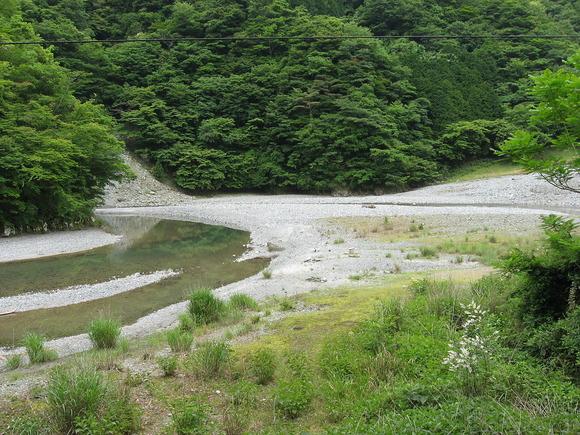 事故発生現場付近の河原