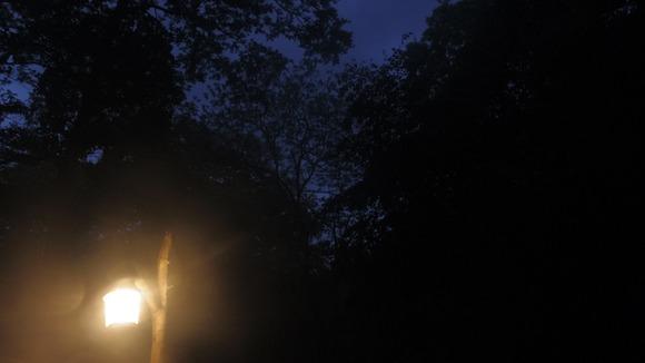 ランタンの光