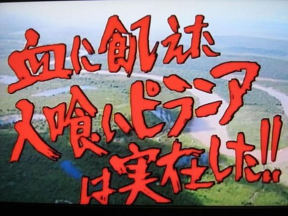 川口浩探検隊 (1)