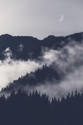 霧のかかる山並み