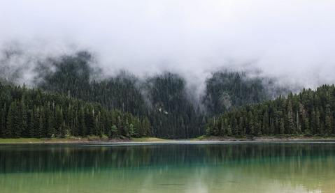 山を覆う霧