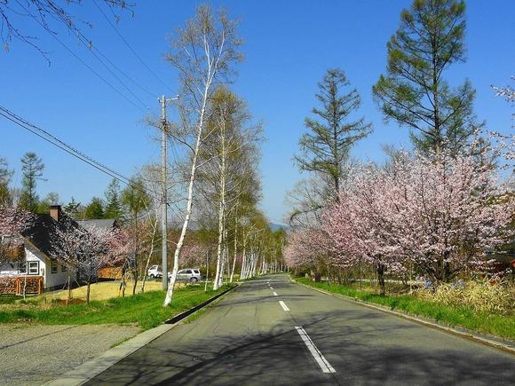 春の村内風景 (1)