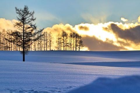 冬の北海道・美瑛の丘の雪原と夕日