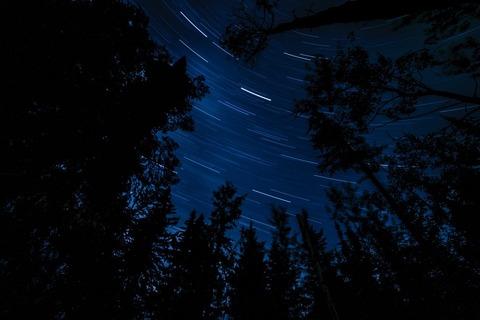 暗い森暗い森