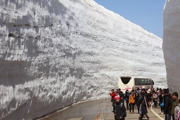 立山高原道路 雪の大谷