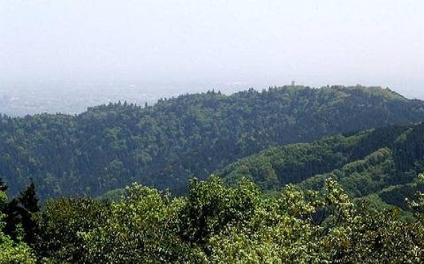 景信山から見た高尾山