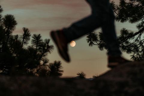 登山者と月
