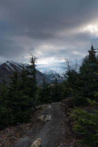 高山登山道