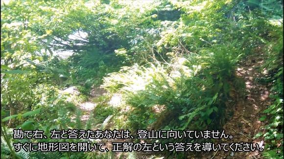 草の生い茂る登山道