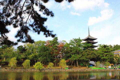 奈良の興福寺の五重塔。 猿沢池からの五重塔。
