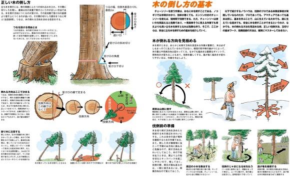 木の倒し方