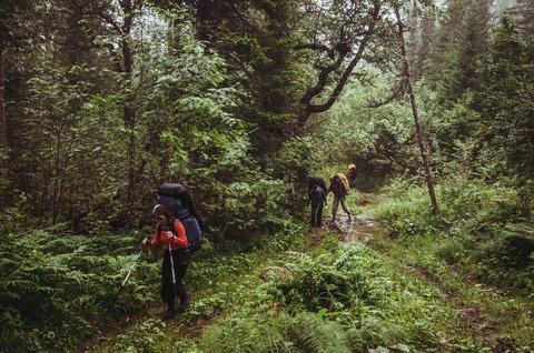 樹林帯の登山者達