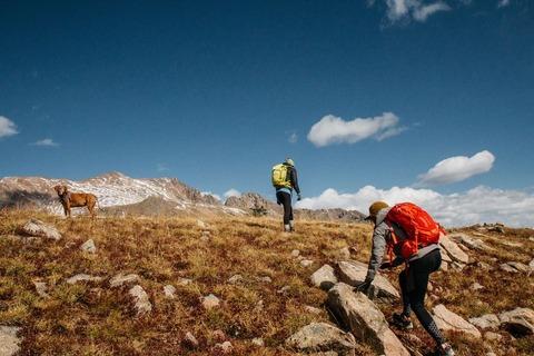 登山者と犬