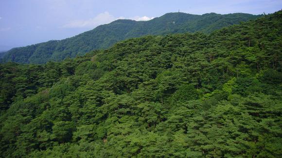 【六甲山】山中でジャージを着た人骨が見つかる・・・