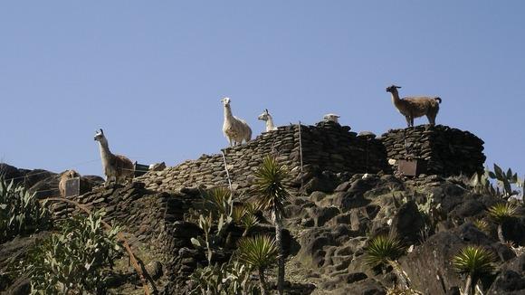 ラマの岩山