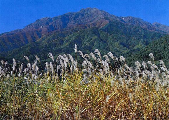滝子山 (1)