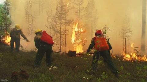 ロシアの山火事