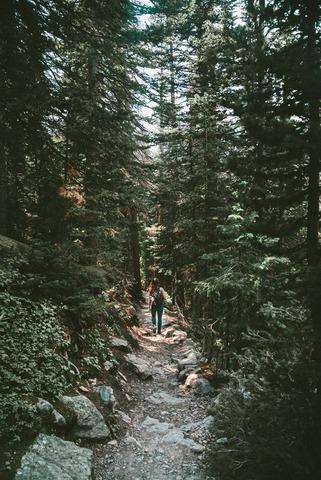 登山道を歩く女性