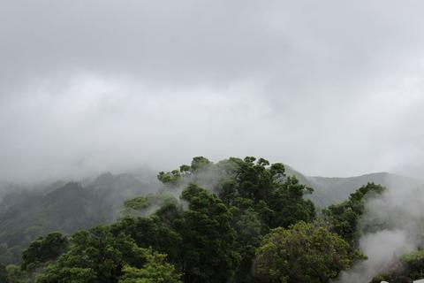 霧のかかる山