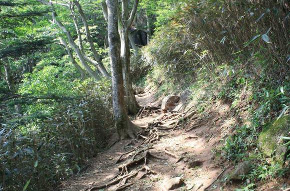 おたつ石コース 筑波山ケーブルカー ロープウェイ