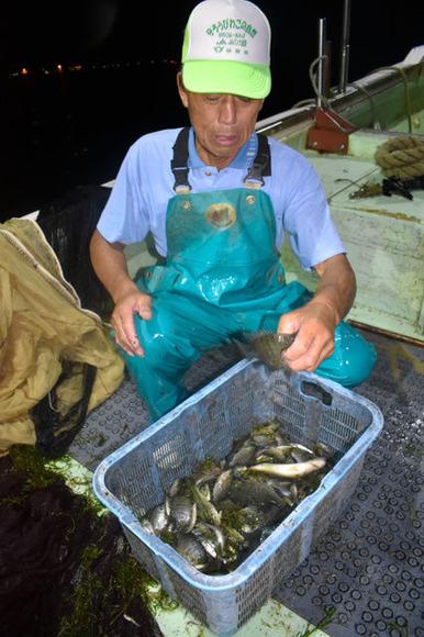【環境】琵琶湖に異変? 姿消す外来魚、駆除量は去年の4割「おらんな、ほんまおらん」