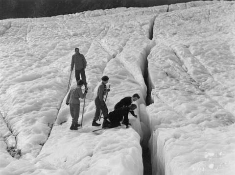 Party_inspecting_a_crevasse_on_the_Fox_Glacier_(3307743585)
