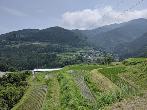 高知の田舎