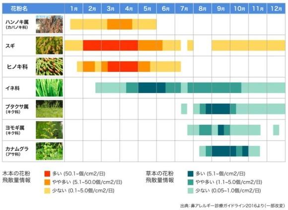 花粉カレンダー (1)