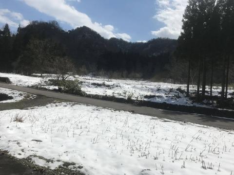 残雪の田舎道