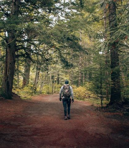 樹林帯の登山者