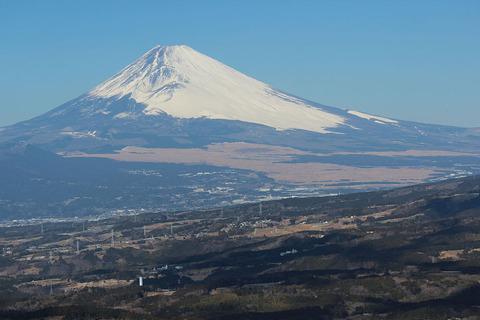 富士山麓の草地が東富士演習場