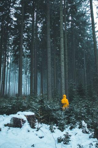森に立つ人