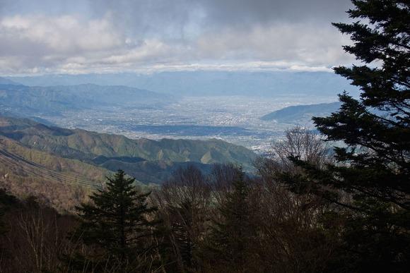 大菩薩嶺から見た甲府盆地  (1)